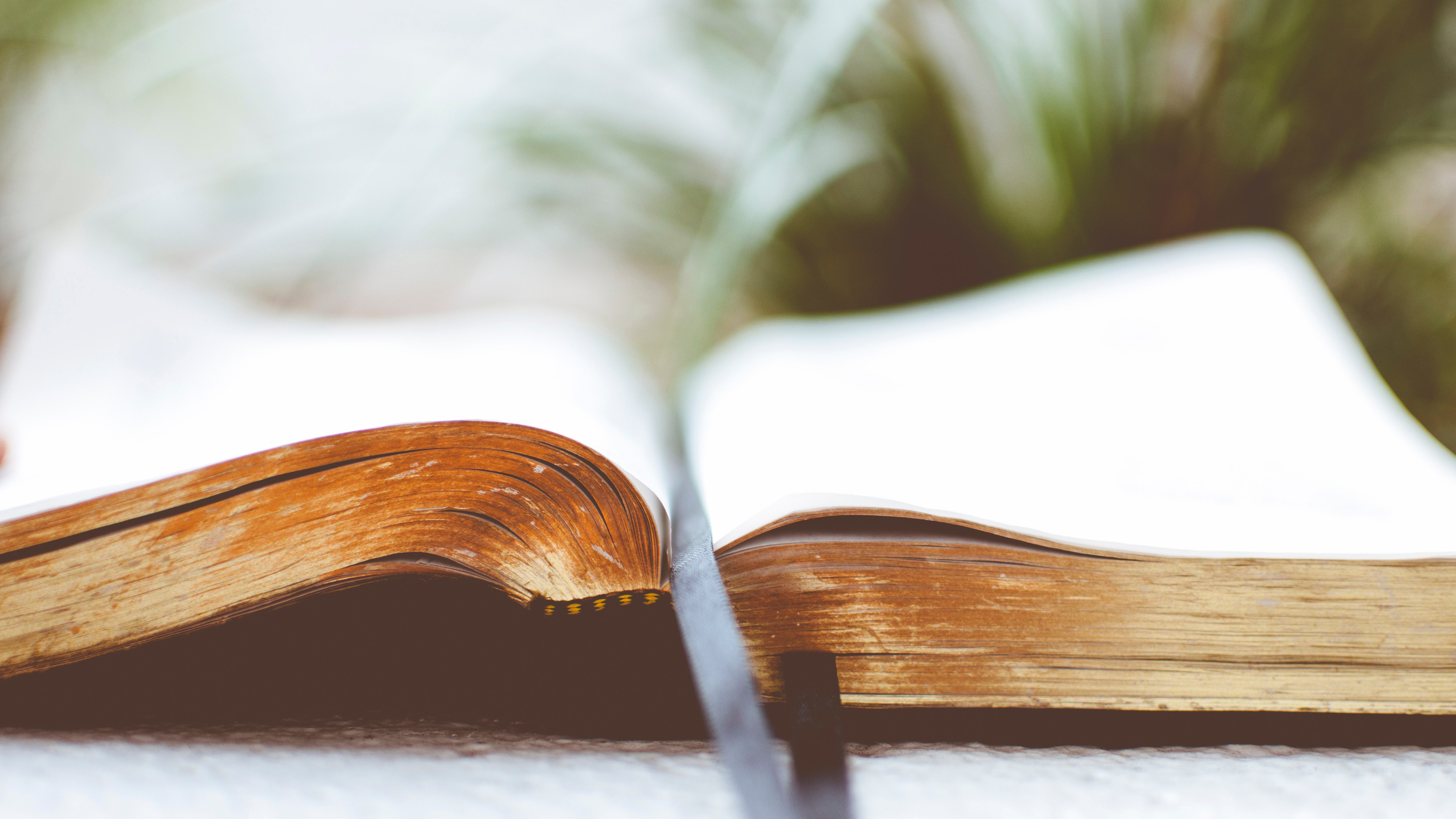 A Bible sits open with a ribbon bookmark running down the middle.