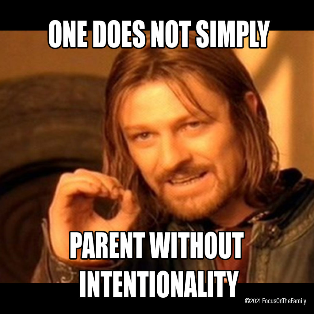 """Lord of the Rings """"One Does Not Simply""""... Parenting Meme"""