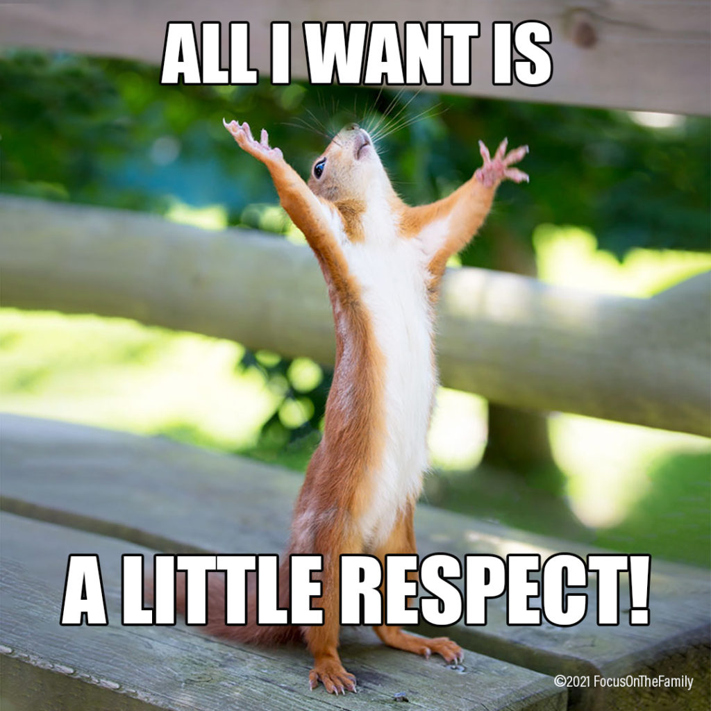 """""""All I want is a little respect!"""" Parenting Meme"""